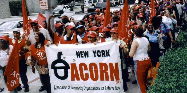 ACORN & THE FIRESTORM